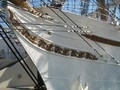 Vollschiff Cisne Branco